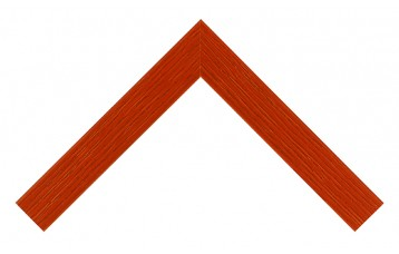 Profil lemn 221-104